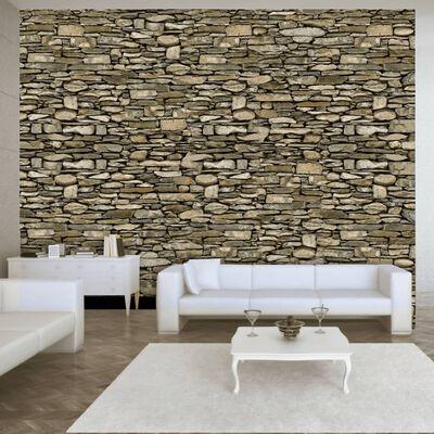 Fototapet - Stone Wall - 100x70 Cm