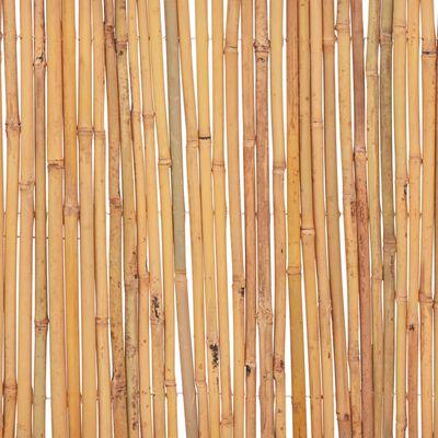 vidaXL Staket bambu 500x50 cm